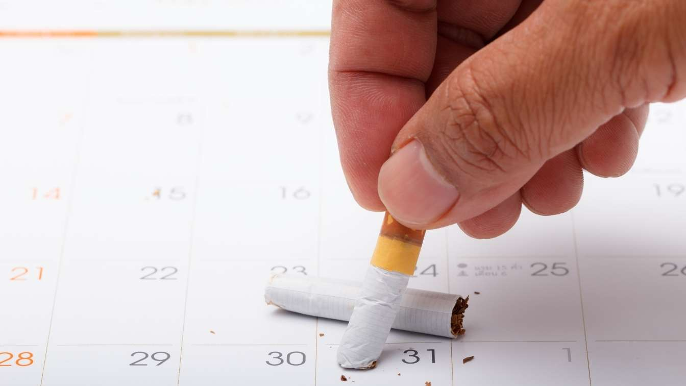 Cigarette stubbed out calendar on 31st of month indicating world no tobacco day
