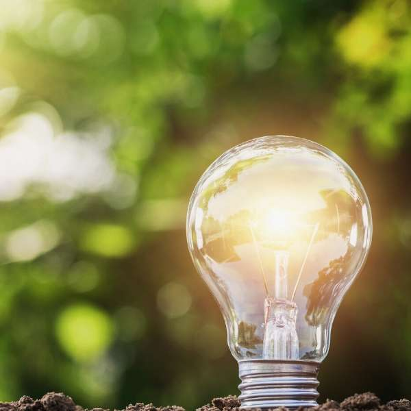 Bright light bulb in earth on green background